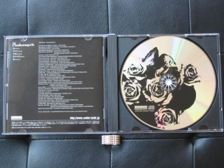 Phantasmagoria : Seeds of Brain CD : Inside