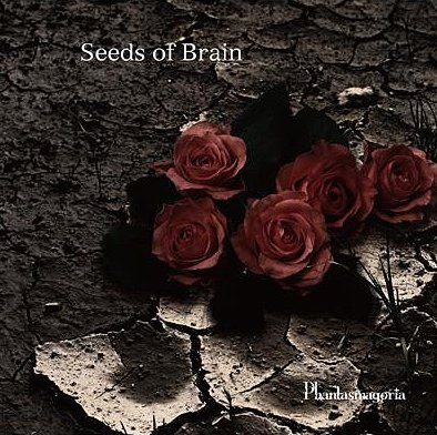 KISAKI / Phantasmagoria Phantasmagoria_seeds_of_brain_uccd_259