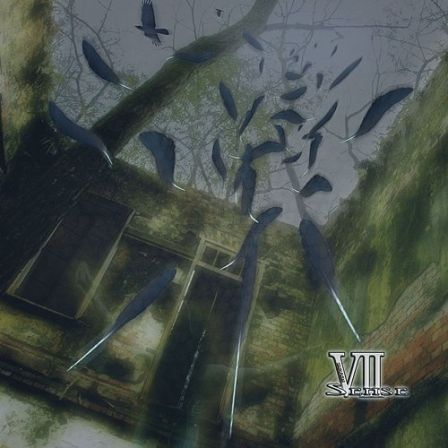 VII-Sense : BLACK BIRD : Front cover