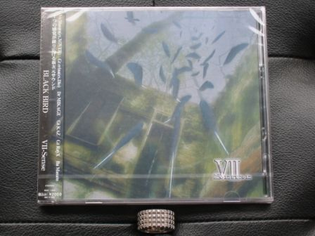 VII-Sense : BLACK BIRD CD+DVD New & Sealed : Front